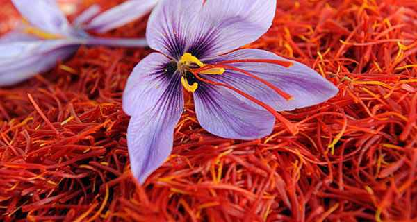 کاهش اضطراب در بیماران دیابتی با مصرف زعفران